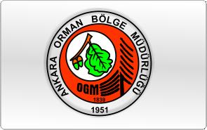 ankara-orman
